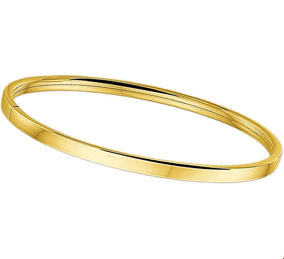 TFT Slavenband Goud Scharnier Vlakke Buis 4 X 60 mm