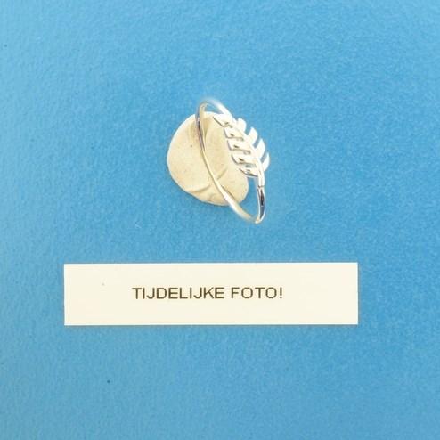 TFT Ring Veer Zilver Gerhodineerd maat 60