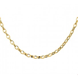 TFT Collier Geelgoud Anker 3,5 mm 43 cm