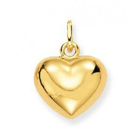 Glow Gouden Hanger/Bedel Hart 11 x 13 mm 230.0003.00