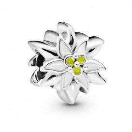 Pandora 798243ENMX Bedel zilver Edelweiss Flower