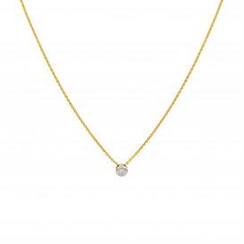 Diamant - 0.03ct - gh/si3 45 cm - ankerschakel - diamant - 0.03ct - gh/si3 202.5010.45