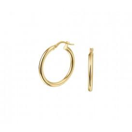 Oorringen Ronde Buis 2,5 Mm Goud Met Zilveren Kern Glanzend 2.5 mm x 25 mm