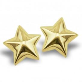 JWLS4U JE005G Oorbellen Star 3D zilver goudkleurig