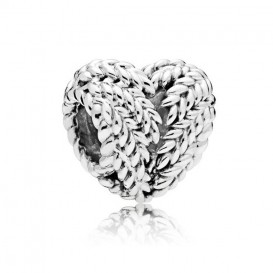 Pandora Bedel zilver Icon of Nature 797618